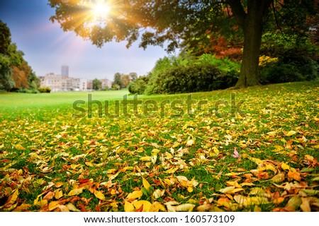 Sunny autumn day in city park  - stock photo