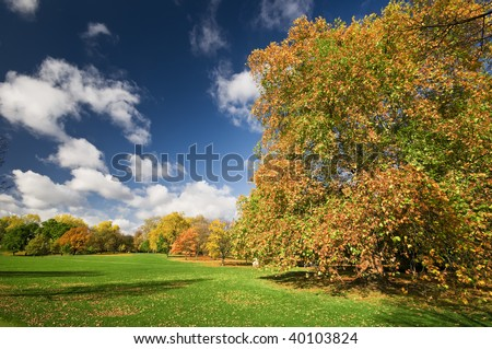 Sunny autumn day in Hyde Park , London. - stock photo