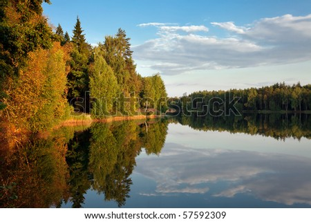 Sunny autumnal forest near the lake