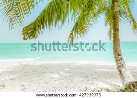 Sunny day at amazing tropical beach with palm tree, white sand and turquoise ocean waves. Myanmar (Burma) travel landscapes and destinations