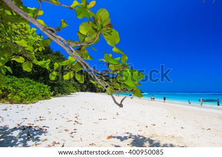 sunny day at Tachi Island,Similan Islands national park,Phang Nga Province,southern Thailand