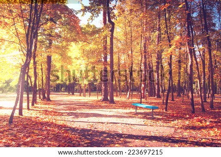 Sunny day in outdoor park with wooden bridge on lake and colorful autumn trees reflection under blue sky. Amazing bright colors of autumn nature landscape - stock photo