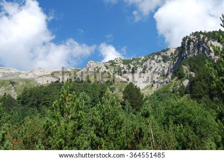 Sunny day in the mountain, Pirin National Park, Bulgaria, Eastern Europe  - stock photo