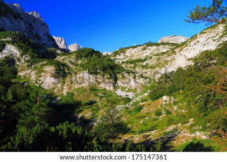 Sunny day on the limestone mountains covered with vegetation - stock photo