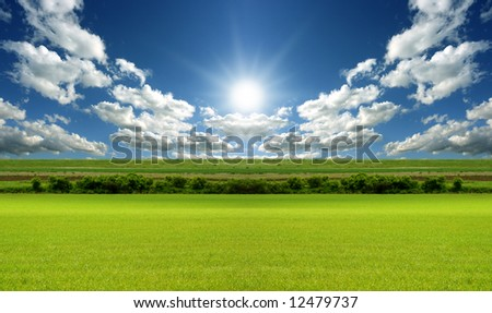 Sunny day with blue sky and green grass - stock photo