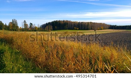 Sunny farm field landscape with blue sky in autumn at countryside in Finland