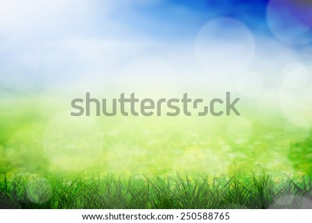 Sunny field with grass in spring - stock photo