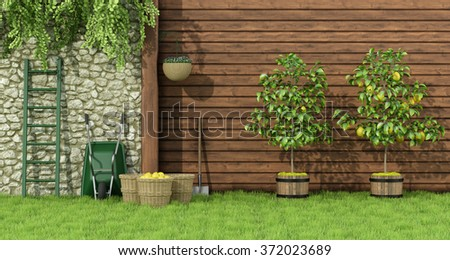 Sunny garden with two lemon trees and wicker baskets - 3D Rendering - stock photo