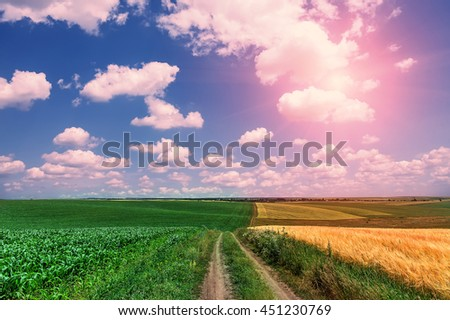 sunny ground road in the rural  field. summer landscape. Idea concept harvest. majestic rural landscape with blue sunny sky with sun. creative image. use as background - stock photo