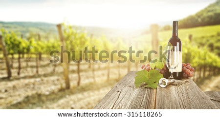 sunny landscape of vineyard with green leaves and gray wooden table of wine bottle  - stock photo