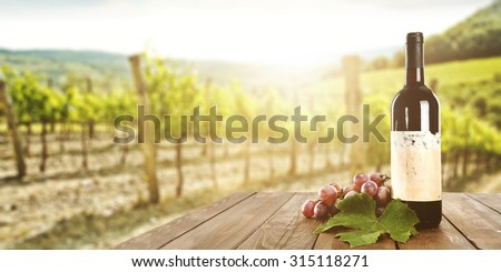 sunny landscape of vineyard with green leaves and red fruits and wine bottle  - stock photo