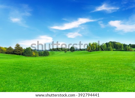 Sunny meadow and blue sky - stock photo