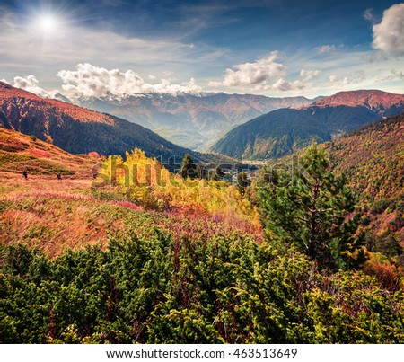 Sunny morning in the Caucasus mountains. Beautiful landscape on the hills of Ushba mountain,  Upper Svaneti, Georgia, Europe. Artistic style post processed photo.
