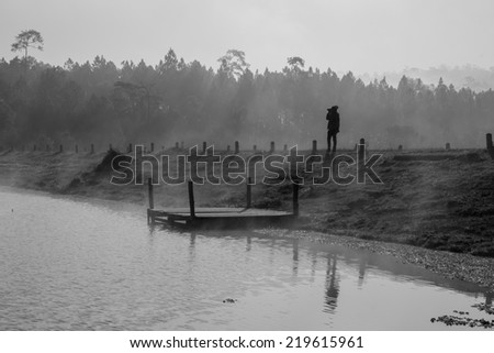 Sunny morning in the marshes. Haze and thin - stock photo