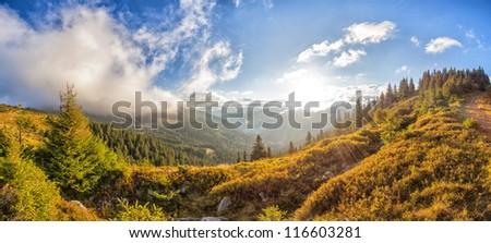 Sunny morning in the Ukrainian Carpathians.Panorama. - stock photo