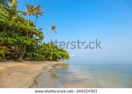 Sunny morning on the beach of Bang Po.Samui Island. Thailand. - stock photo