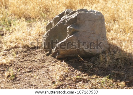 Sunny rock in dry grass - stock photo