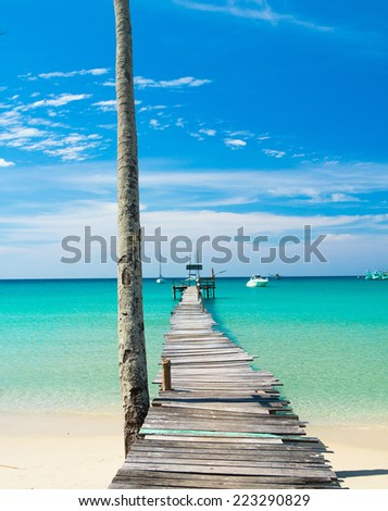Sunny Serenity Path filled with Love  - stock photo