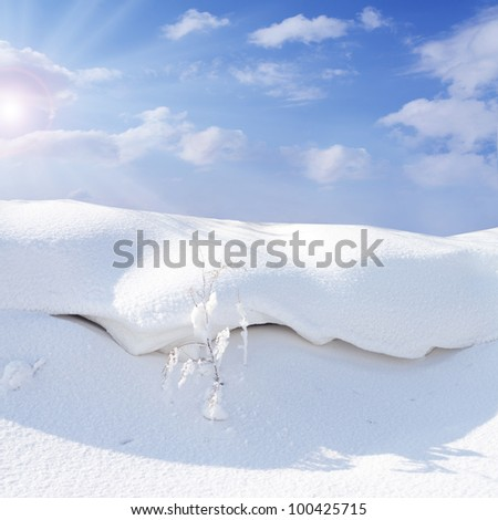 Sunny snow in the winter