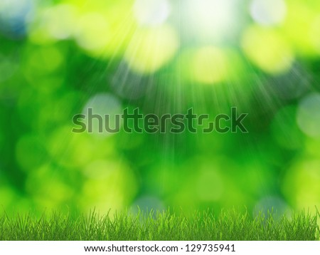Sunny spring nature background - stock photo