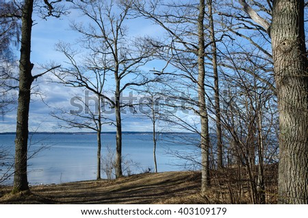 Sunny spring season view from a deciduous forest at spring season - stock photo