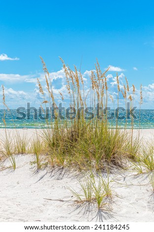 sunny St. Pete beach with sand dunes and blue sky in Florida - stock photo