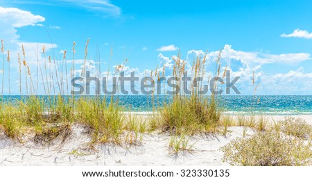 Sunny St. Pete beach with sand dunes, grass and blue sky in Florida, USA - stock photo