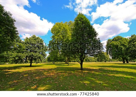 Sunny summer afternoon in London Hyde Park - stock photo