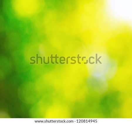 Sunny summer bokeh background - stock photo