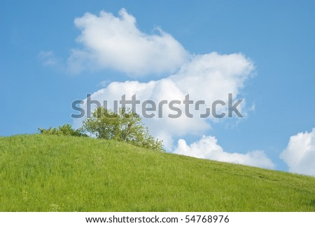 Sunny Summer Landscape with Hill and Meadow - stock photo