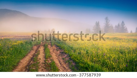 Sunny summer morning in the Carpathians. Foggy rural scene with country road, Ukraine, Europe. - stock photo