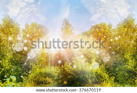 Sunny summer nature background with green trees ans sun rays - stock photo