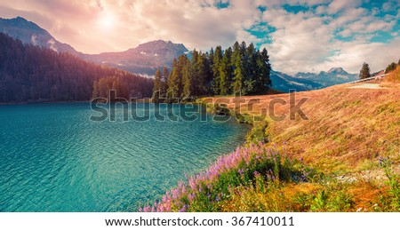 Sunny summer panorama of the Champferersee lake. Silvaplana town square, district of Maloja, Swiss canton of Graubunden, Switzerland, Alps, Europe. Instagram style filtered. - stock photo