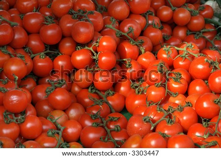 sunny tomatoes on the background