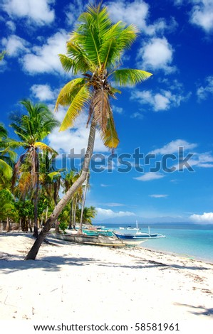 sunny tropical beach - stock photo
