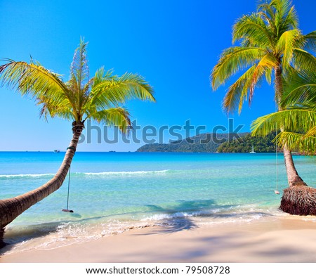 Sunny tropical beach under blue sky. Luxury summer vacations scene.