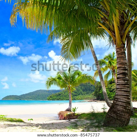 Sunny tropical beach under blue sky. Luxury summer vacations scene. - stock photo