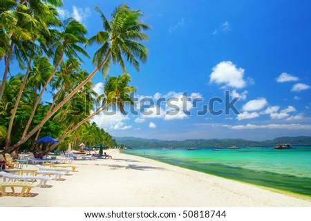 sunny tropics - stock photo