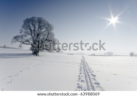 Sunny weather - stock photo