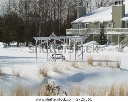 sunny winter in backyard - stock photo
