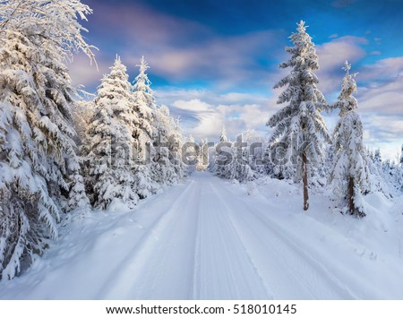 Sunny winter morning in Carpathian mountains with snowy country road. Colorful outdoor scene, Happy New Year celebration concept. Artistic style post processed photo.