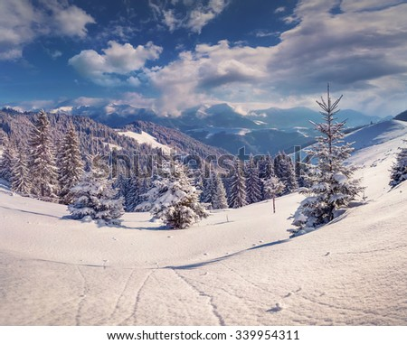 Sunny winter morning in the mountains. Happy New Year! - stock photo