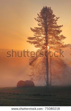 Sunrise and camp - stock photo