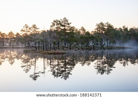 Sunrise at a forest lake wih fog - stock photo