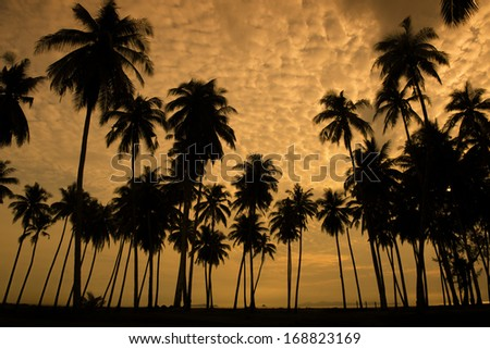 Sunrise at a tropical beach in Asia.  - stock photo
