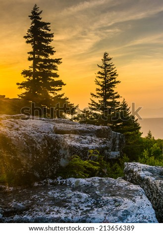Sunrise at Bear Rocks Preserve, in Dolly  Sods Wilderness, Monongahela National Forest, West Virginia. - stock photo