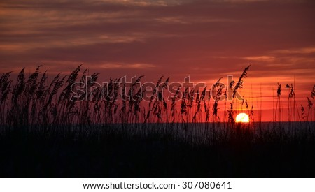 Sunrise at Kure Beach North Carolina on a warm summer morning seen through the beach grass.