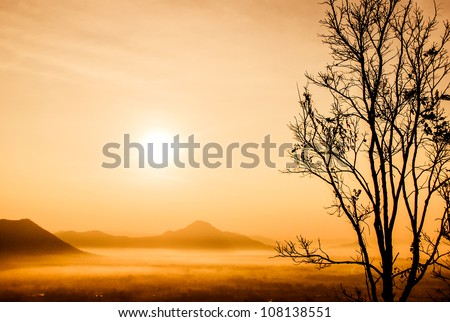 sunrise at Phu-thok,loei ,thailand - stock photo