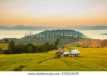 Sunrise at Terraced Paddy Field in Mae-Jam Village , Chiang Mai Province , Thailand - stock photo
