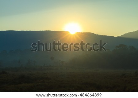 Sunrise at the mountain at Khao Yai national park (a unesco world heritage site), Thailand.